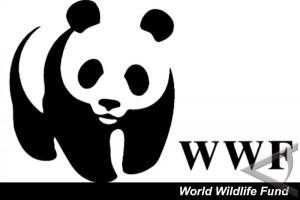 World-Wild-Life-Fund